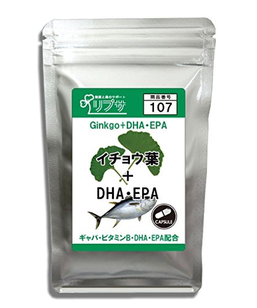 おそらく致死明確なイチョウ葉&DHA?EPA 約1か月分 C-107