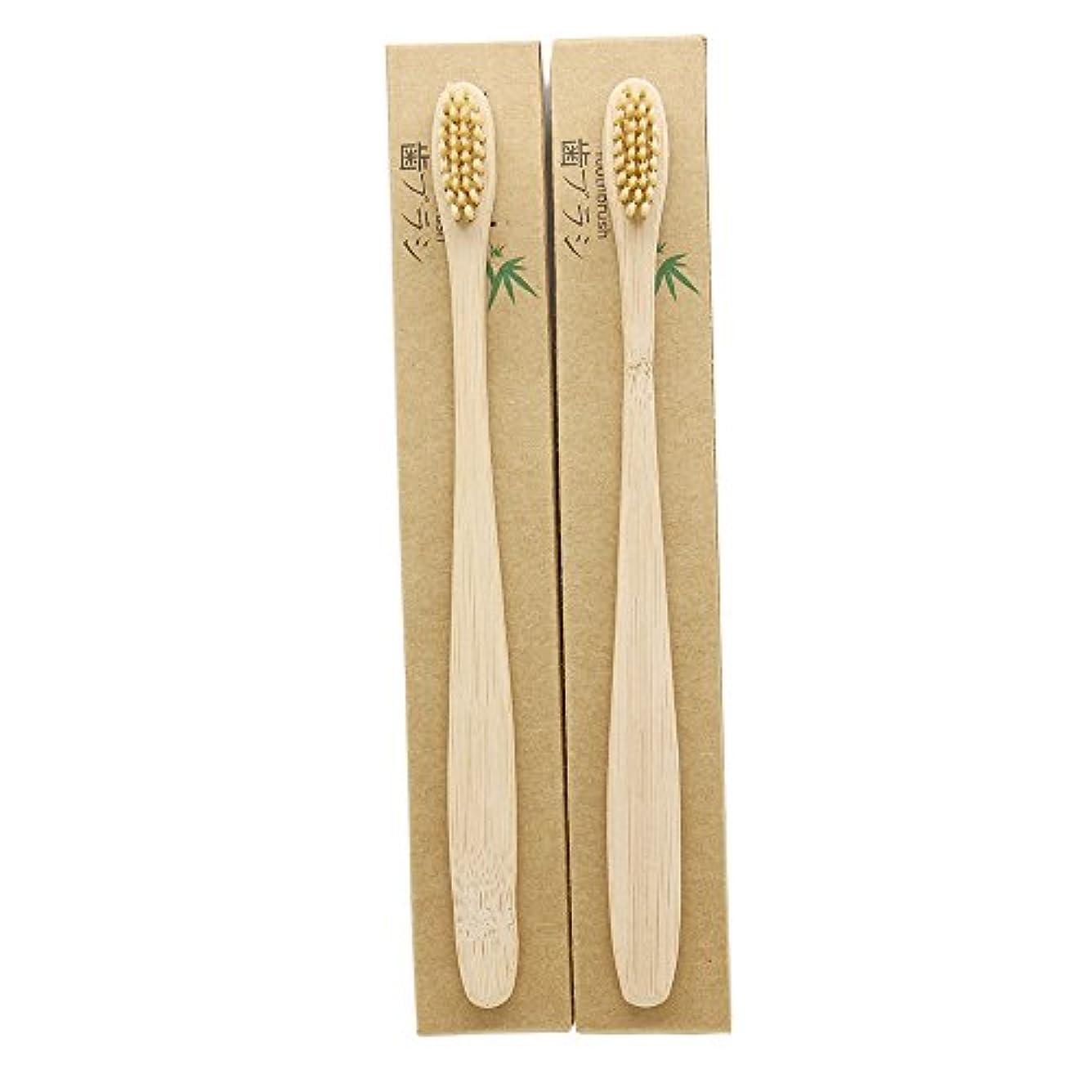 アリーナゲージレスリングN-amboo 竹製耐久度高い 歯ブラシ 2本入り セット エコ ヘッド小さい クリ—ム色