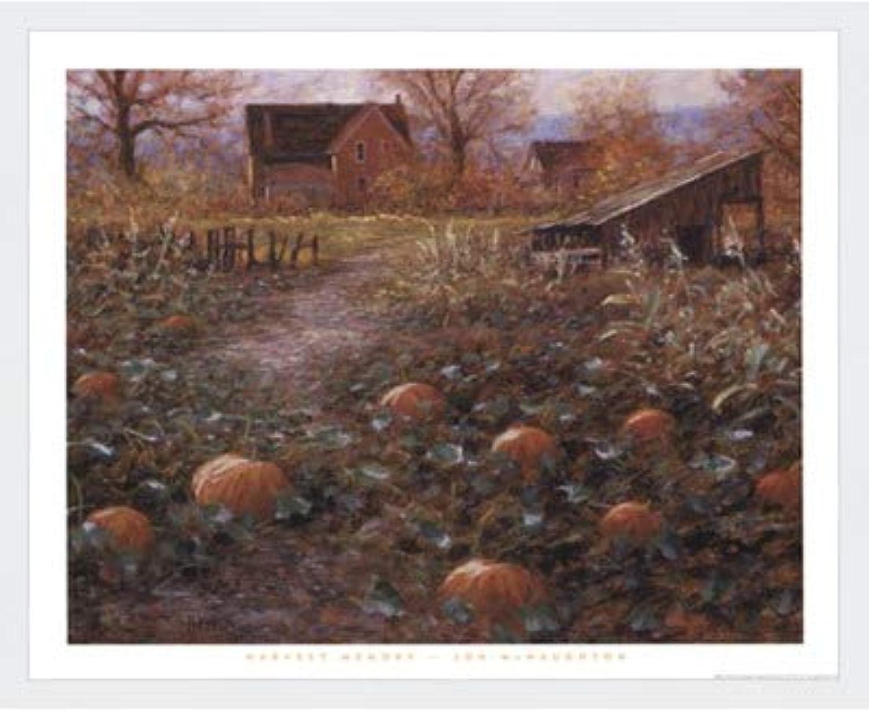 Harvestメモリby Jon Mcnaughton – 22 x 18インチ – アートプリントポスター LE_115192-F8989-22x18