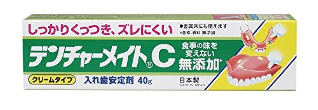 配偶者ゆりかごステンレス共和 デンチャーメイトC 40g