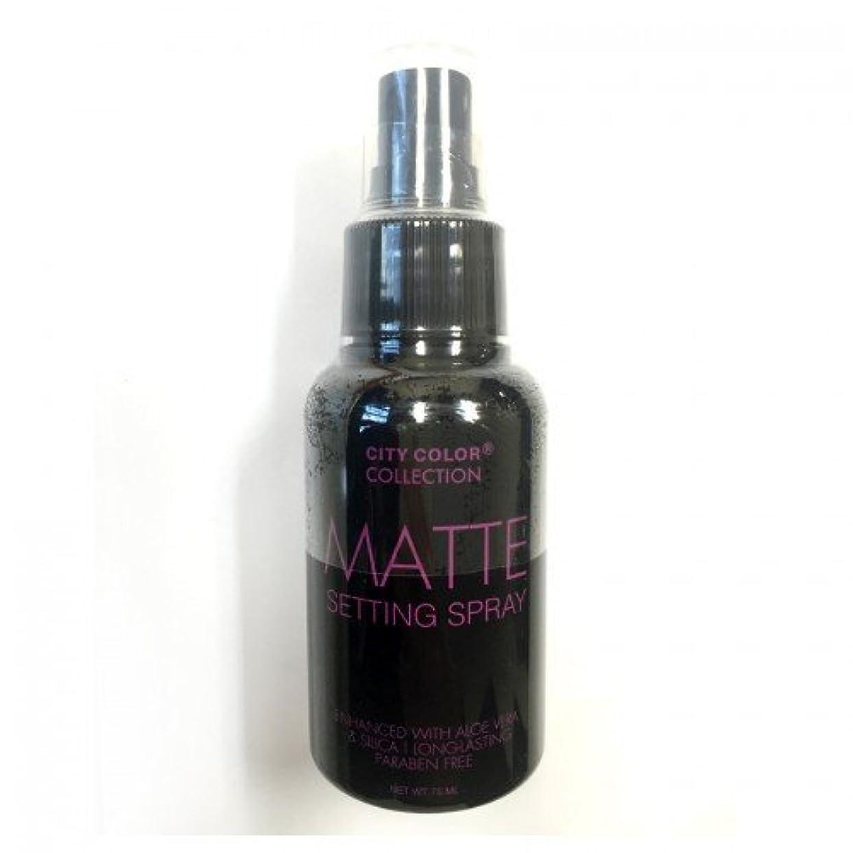 強調する追い越す白雪姫(3 Pack) CITY COLOR Matte Setting Spray (並行輸入品)