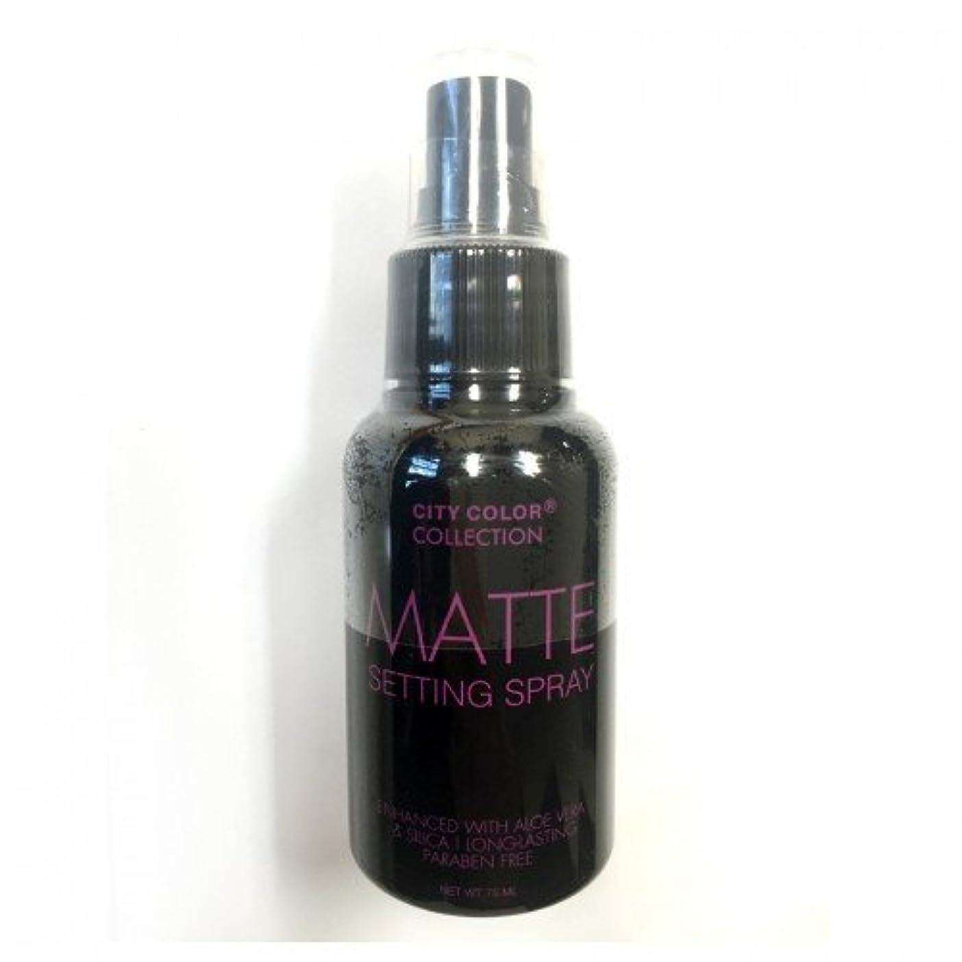 パースブラックボロウファブリック発揮する(3 Pack) CITY COLOR Matte Setting Spray (並行輸入品)
