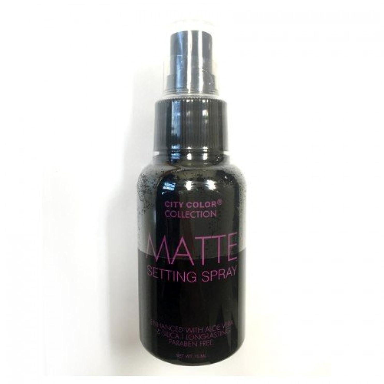 アクション電気陽性塩(3 Pack) CITY COLOR Matte Setting Spray (並行輸入品)