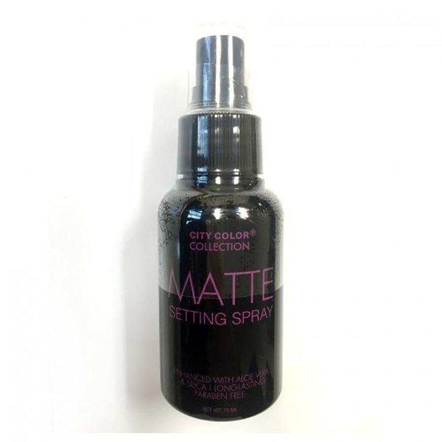 不名誉な合理化ローブ(3 Pack) CITY COLOR Matte Setting Spray (並行輸入品)