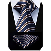 HISDERN Formal Ties for men Business Striped Tie Set Handkerchief Wedding Party Necktie & Pocket Square Set