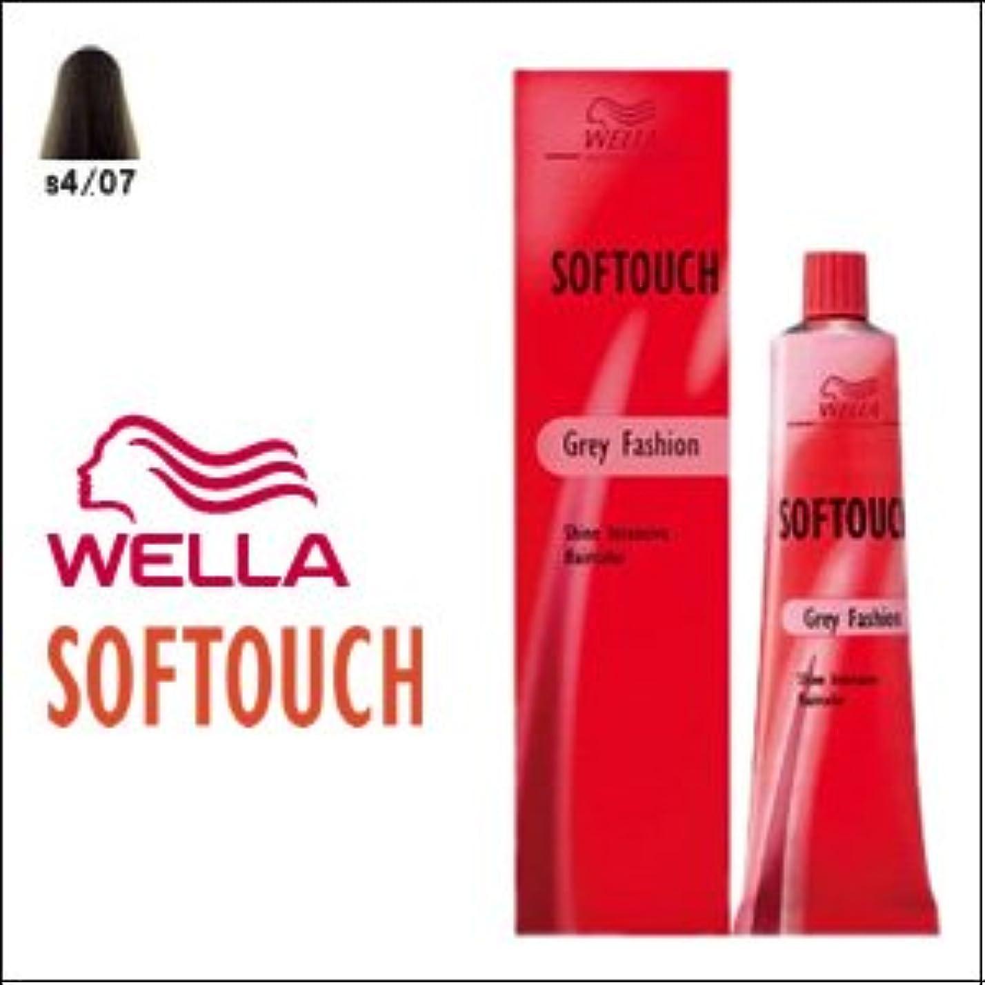 鉛筆拮抗受粉するウエラ ヘアカラー ソフタッチ S4/07 60g