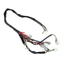 Qiilu 車ワイヤーハーネス 配線ハーネスアセンブリ データ転送 高温耐性 優れた導電性 使いやすい 丈夫 取り付け簡単 Yamaha PW50に対応