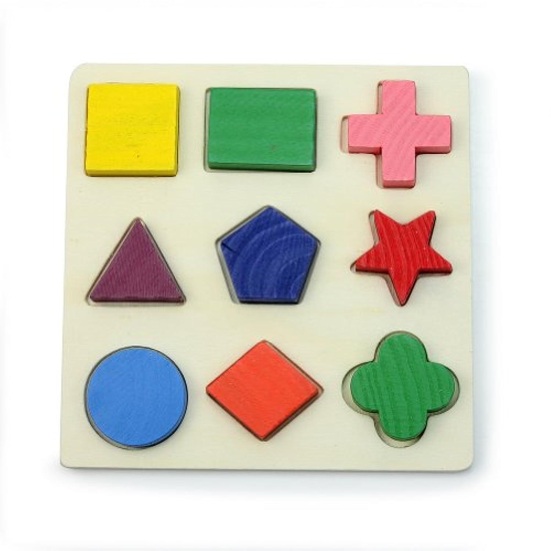 ReFaXi 積み木のおもちゃ 9種形状