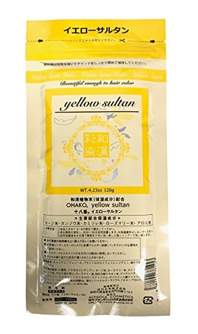 息切れ手伝う食い違いグランデックス 和漢彩染 十八番 120g イエローサルタン