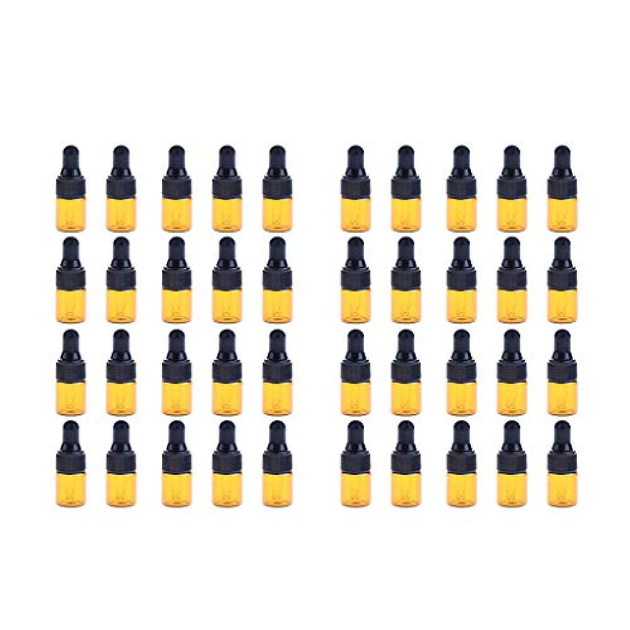 遅らせる敵対的削除するFenteer ドロッパーボトル 精油 ミニサイズ 詰め替え可 ガラス スポイトボトル 1ml /2ml 40個入