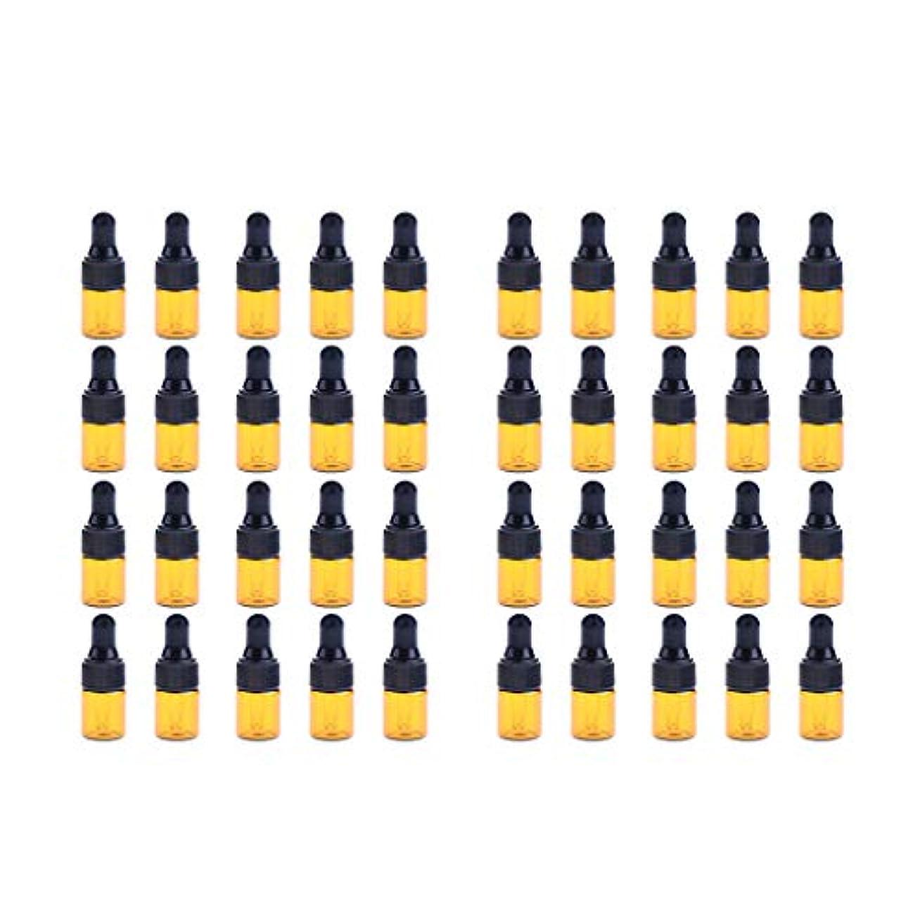彫刻家りんご断言するFenteer ドロッパーボトル 精油 ミニサイズ 詰め替え可 ガラス スポイトボトル 1ml /2ml 40個入