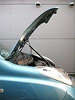 マーチ AK12 ボンネットダンパー シルバーカーボン