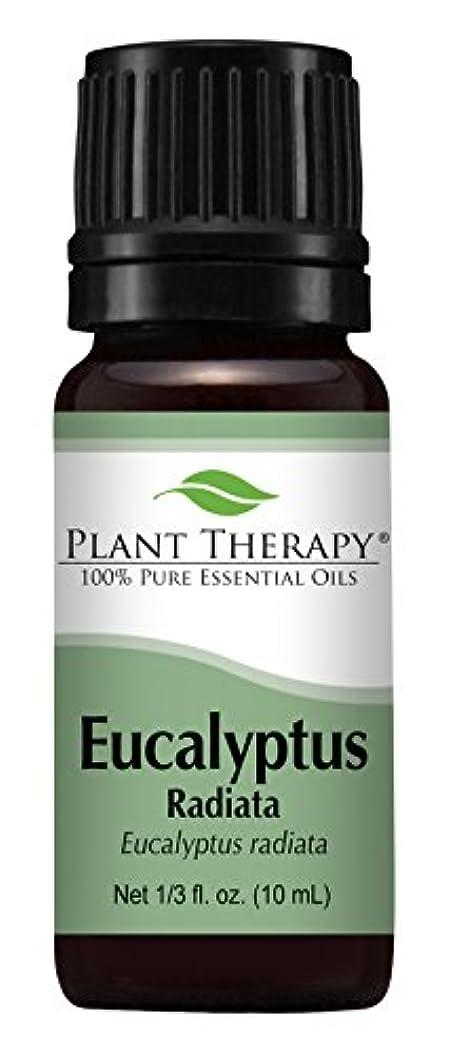 キャメルくるくるシンプルさEucalyptus Radiata Essential Oil. 10 ml (1/3 oz) 100% Pure, Undiluted, Therapeutic Grade by Plant Therapy Essential...