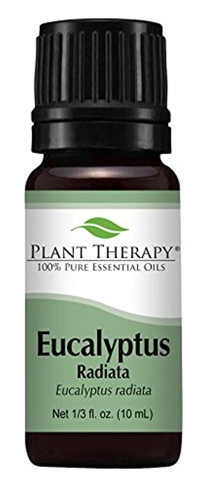 するだろうメガロポリス任意Eucalyptus Radiata Essential Oil. 10 ml (1/3 oz) 100% Pure, Undiluted, Therapeutic Grade by Plant Therapy Essential...