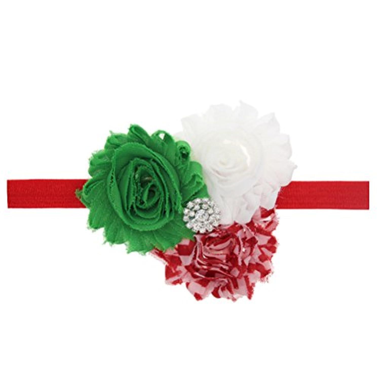 Zhhlaixing ベビー小物 Kids Baby Girls Chiffon Silk Flowers Headband Hairband Flower Hair Accessories for Christmas