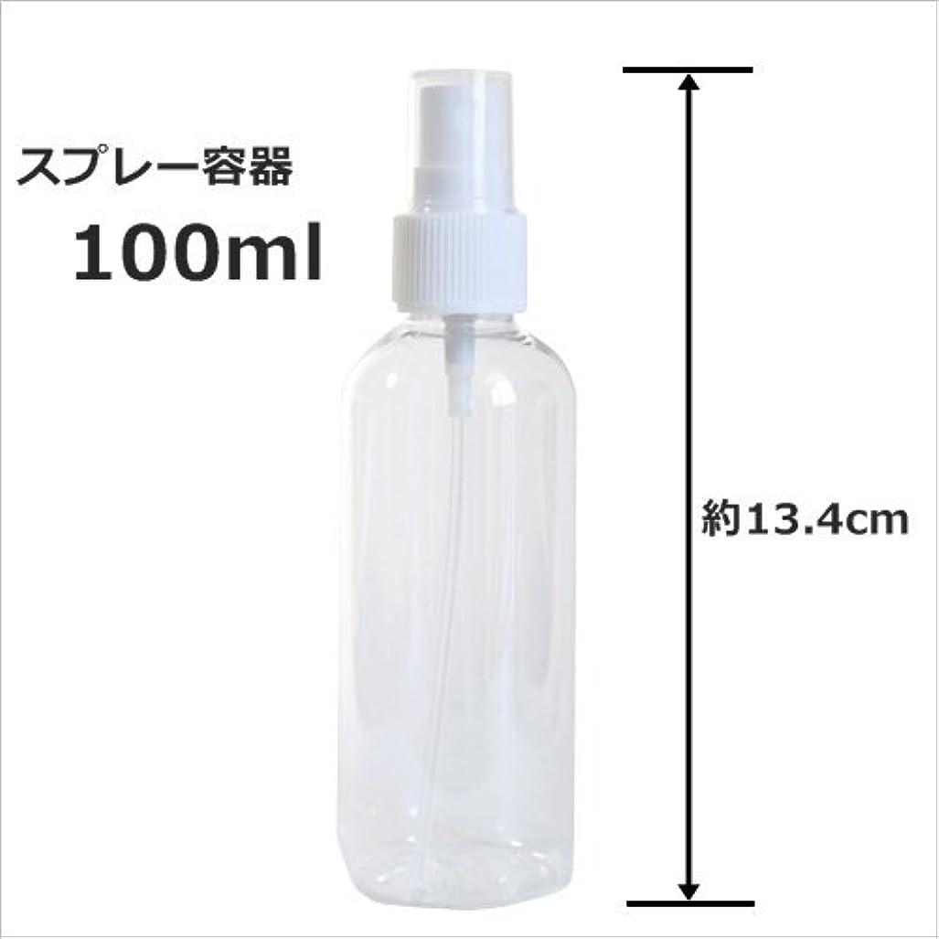 正確さ時代遅れスプリットスプレーボトル 100ml プラスチック容器 happy fountain