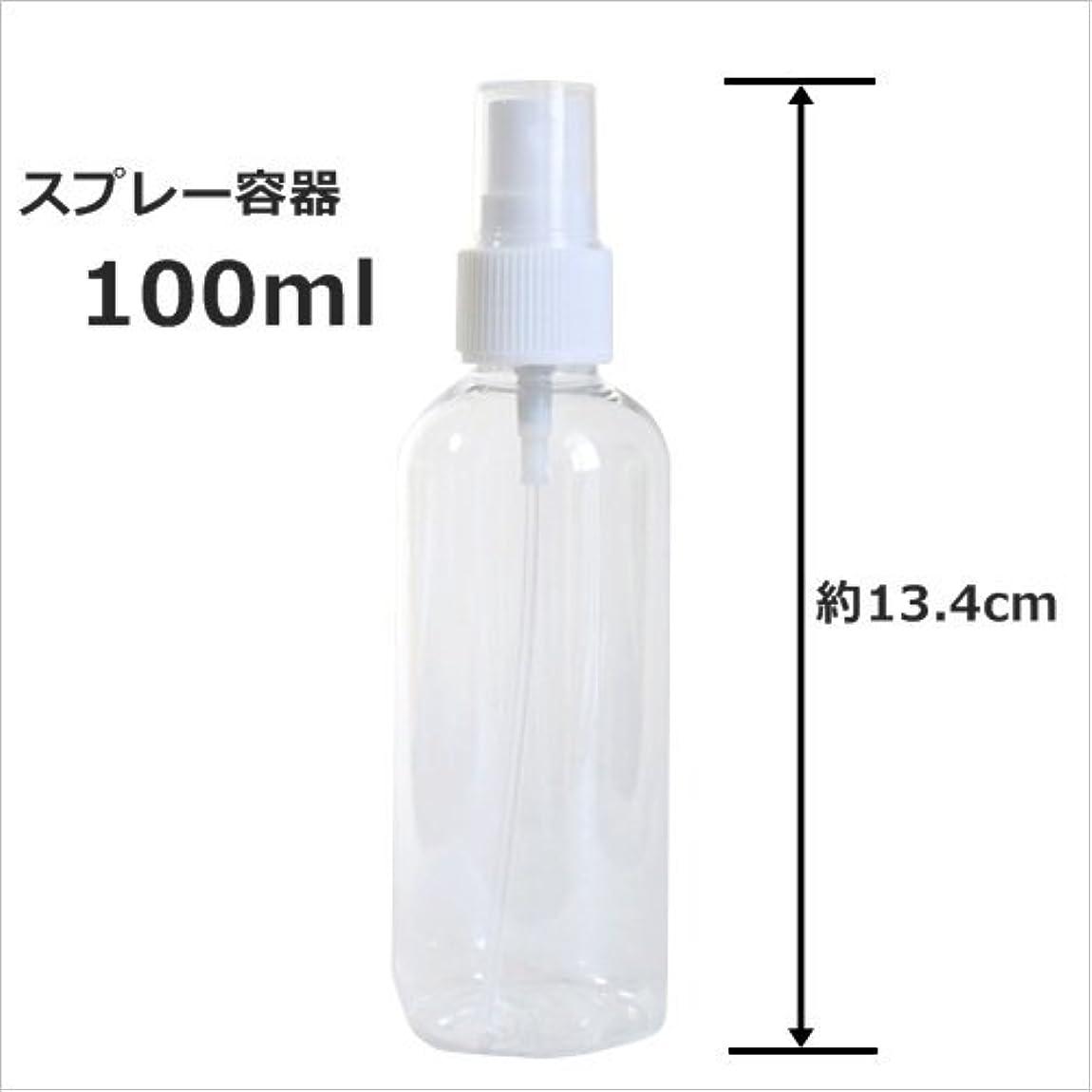 考える壊す熱意スプレーボトル 100ml プラスチック容器 happy fountain