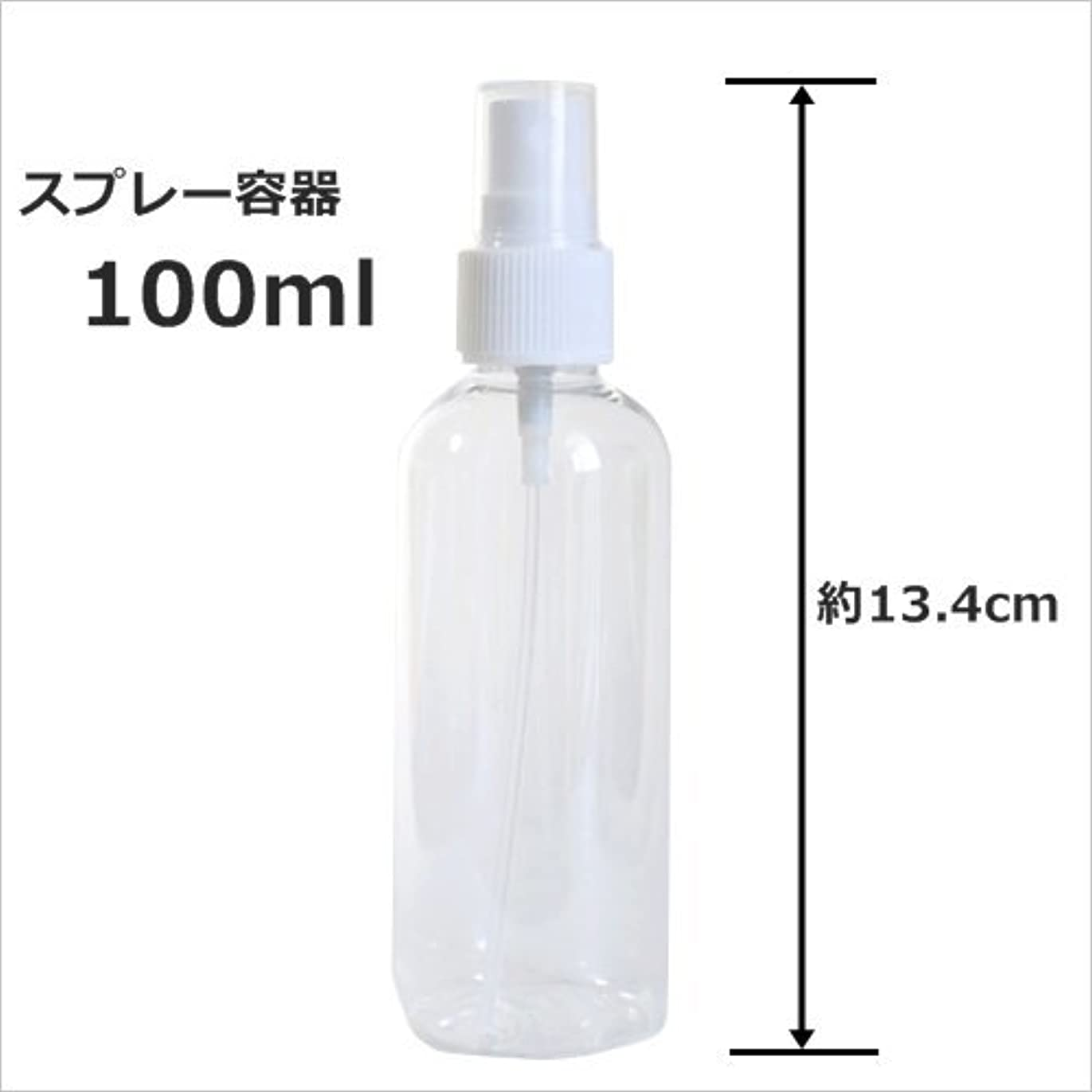 なぞらえる辞書パステルスプレーボトル 100ml プラスチック容器 happy fountain