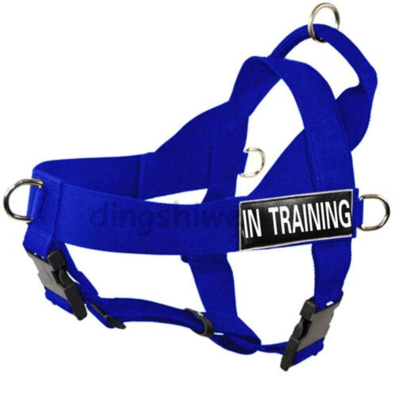 概して経験者アヒルFidgetGear Dog Harness Adjustable Strong Nylon Padded All Sizes for Labrador Pit bully Blue L fit girth 29
