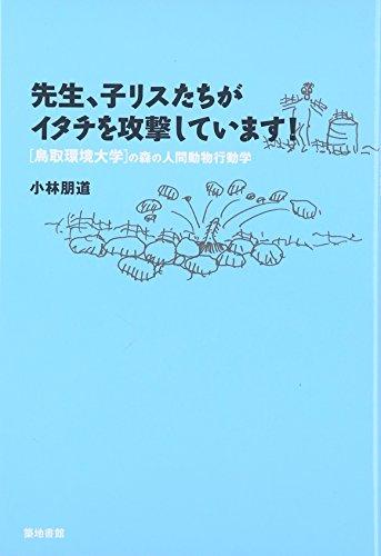 先生、子リスたちがイタチを攻撃しています! 鳥取環境大学の森の人間動物行動学の詳細を見る
