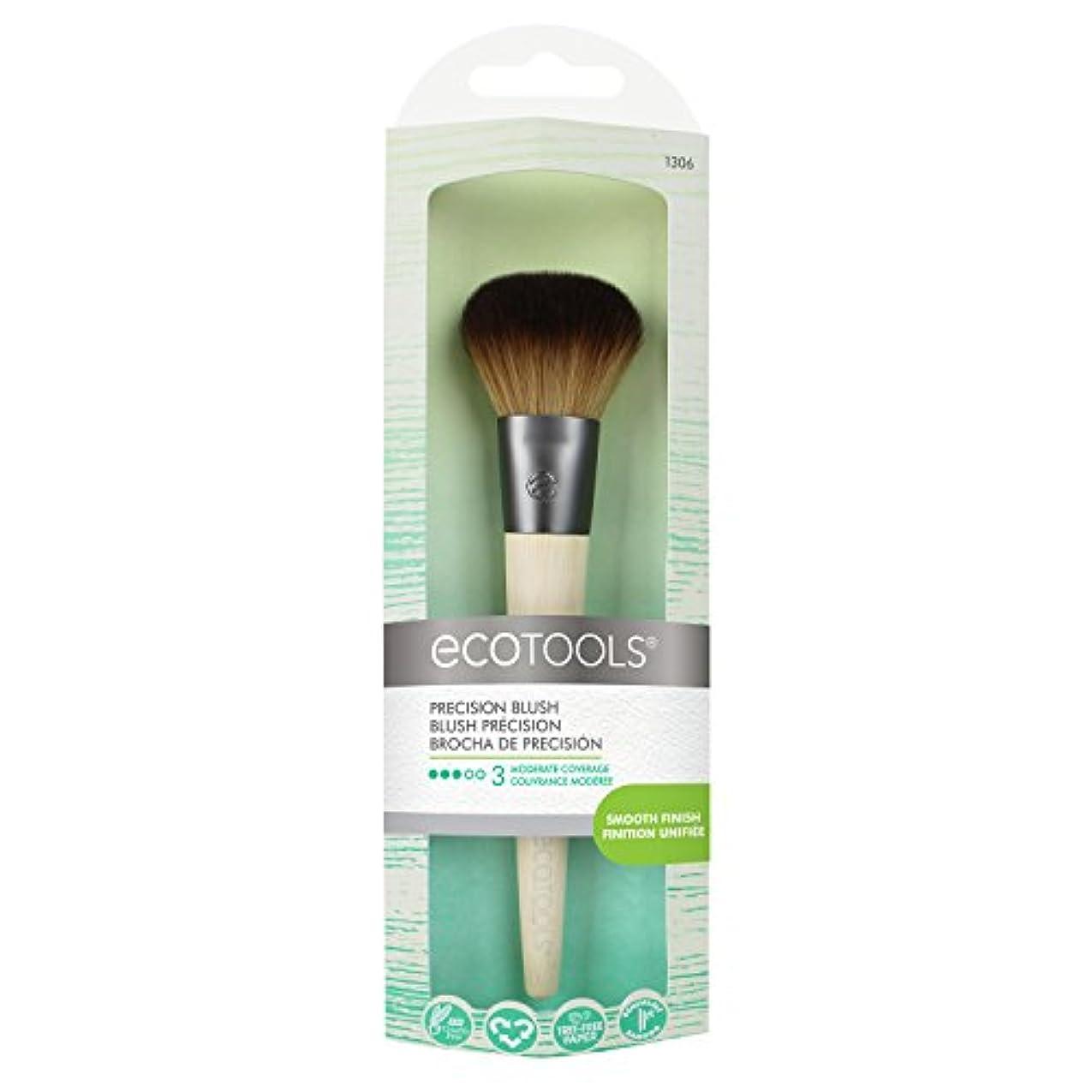 抑制おもちゃレイアEcoTools Precision Blush Brush (並行輸入品)
