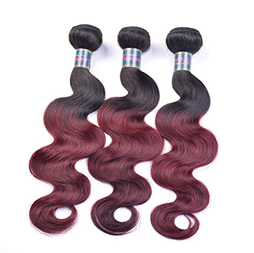 レイア超えるもう一度女性130%密度ブラジルの髪織り髪バンドル実体波1バンドル髪バンドル実体波人間の髪の毛のグラデーション