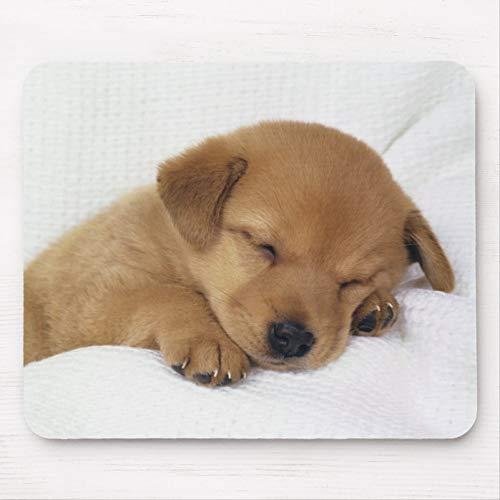 かわいいベビー犬 マウスパッド敷き おしゃれ かわいい 滑り止め 動物 可愛い マット パット オシャレ(20x25cm...