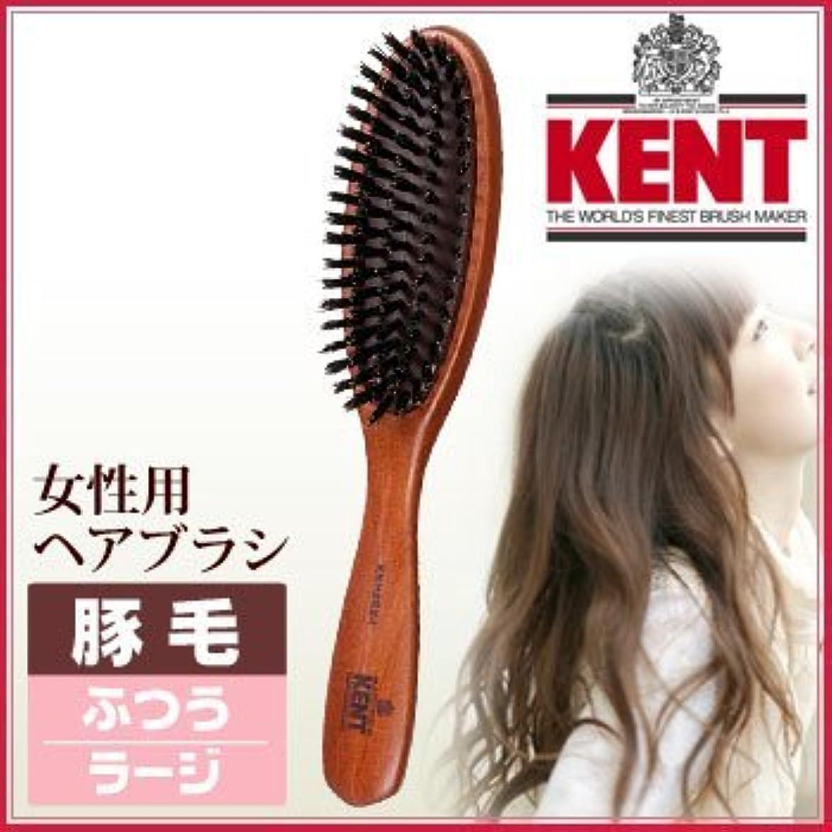 おめでとう十分ではない優しいKENT レディース ブラッシングブラシ[ラージサイズ/豚毛ふつう]KNH-2624