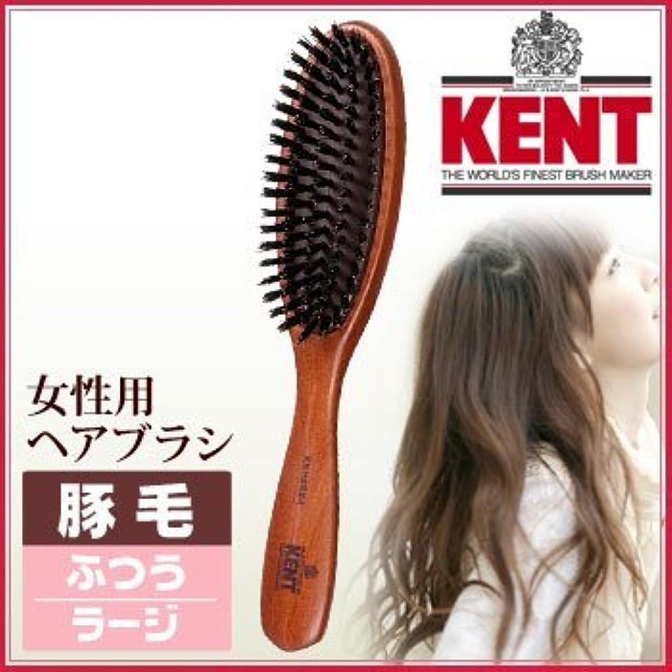 心配なすはげKENT レディース ブラッシングブラシ[ラージサイズ/豚毛ふつう]KNH-2624