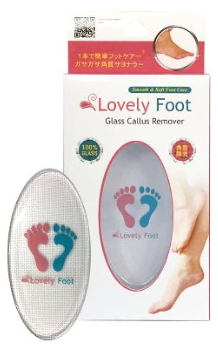 概して筋防止Lovely Foot Glass Callus Remover (ガラス角質取り)