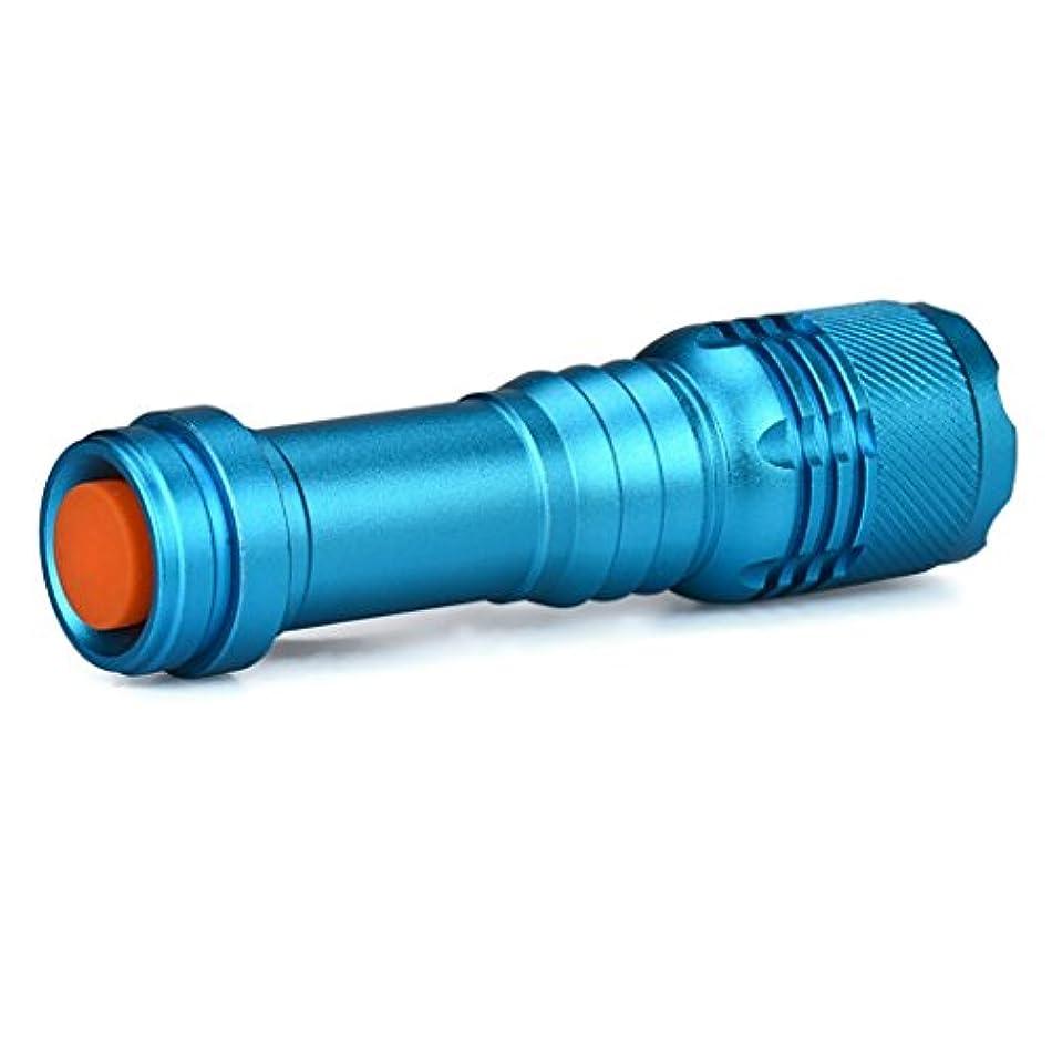日食透明に周波数Aliciga LED 懐中電灯 スーパーブライト バイク 強力 自転車 アルミニウム合金 ミニ 14500/AA 光ランプ 防災 防犯 ブルー 青 3000LM
