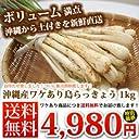 【伊江島産】泥付き生島らっきょう(約1kg)