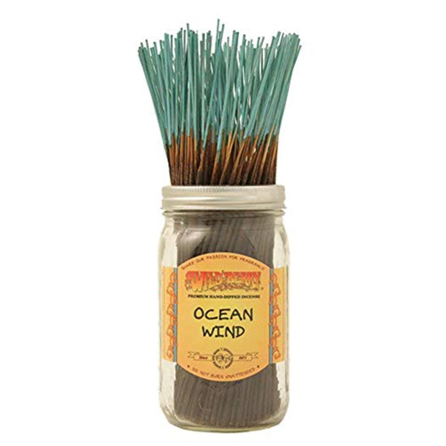長いです顕著剥離海洋風 – 100ワイルドベリーIncense Sticks