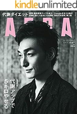 AERA1/13号
