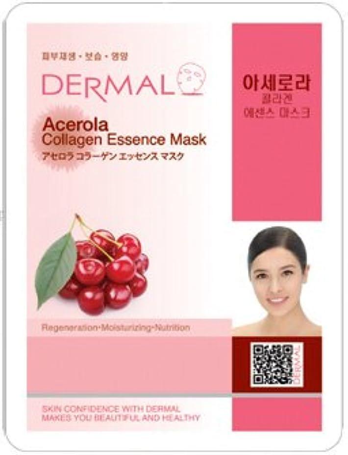 実験性能弁護人シートマスク アセロラ 10枚セット ダーマル(Dermal) フェイス パック