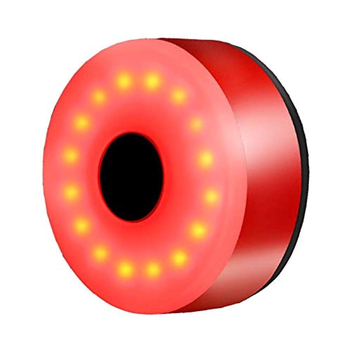 強制的余暇特権的Seawang 自転車LEDライト テールライト USB充電式 自転車 テールランプ 防水 夜歩き 夜警告 安全夜灯 バイクライト 簡単取り付け