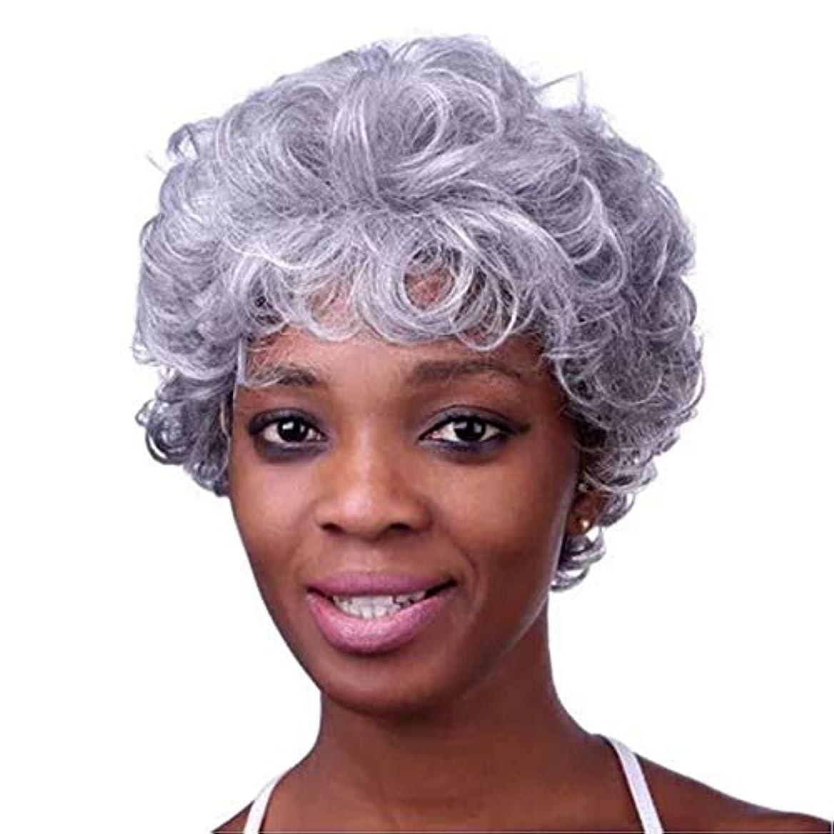 ラリー無傷シネウィKerwinner 本物の髪として女性のための前髪天然合成フルウィッグと白人女性ストレートグレーの髪のかつらをショートウィッグ