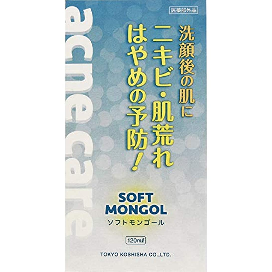 以上手数料人口【2個セット】ソフトモンゴール 120ml