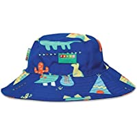 Penny Scallan Broad Brimmed Hat Dino Rock