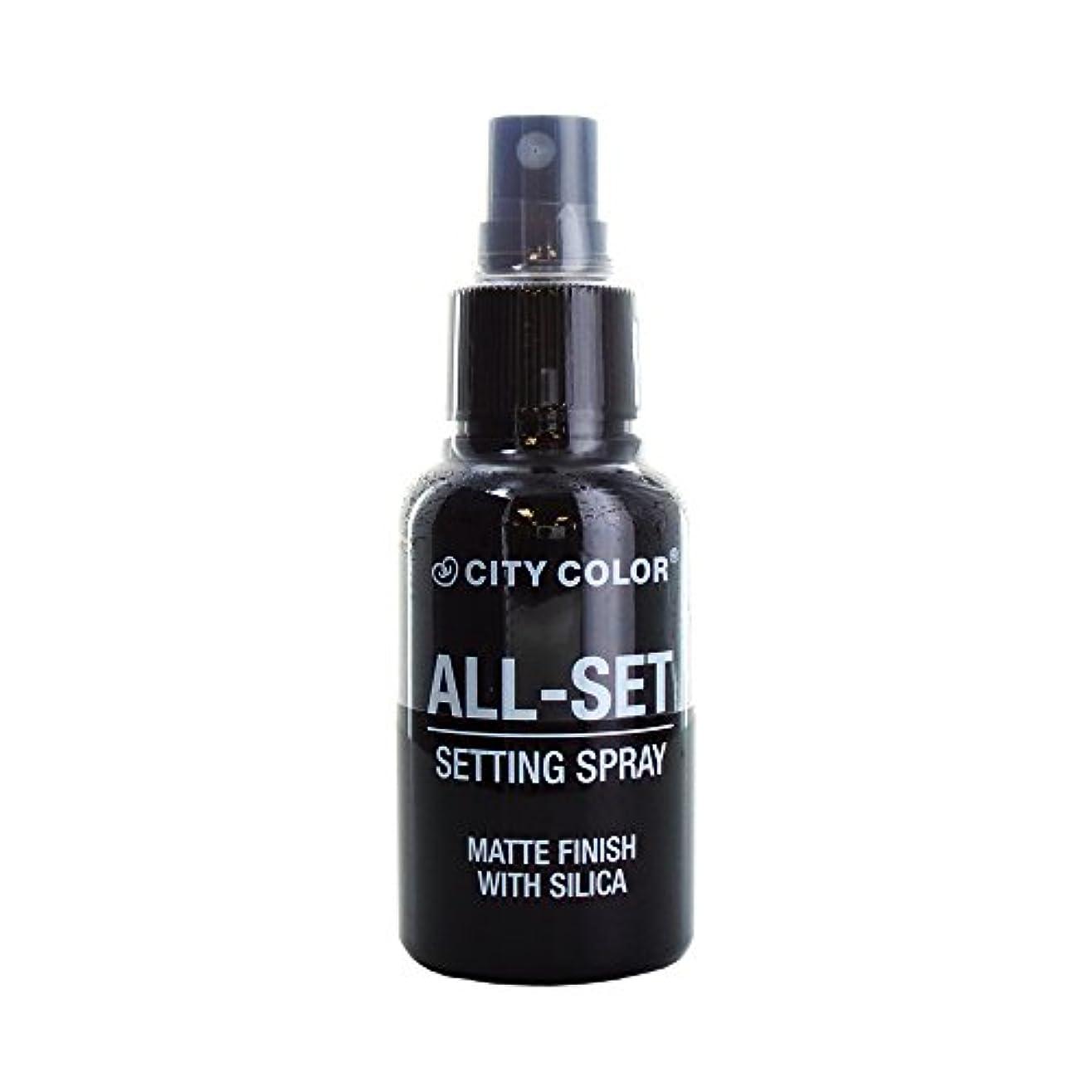 従来のビリーヤギとにかく(6 Pack) CITY COLOR All-Set Setting Spray (並行輸入品)