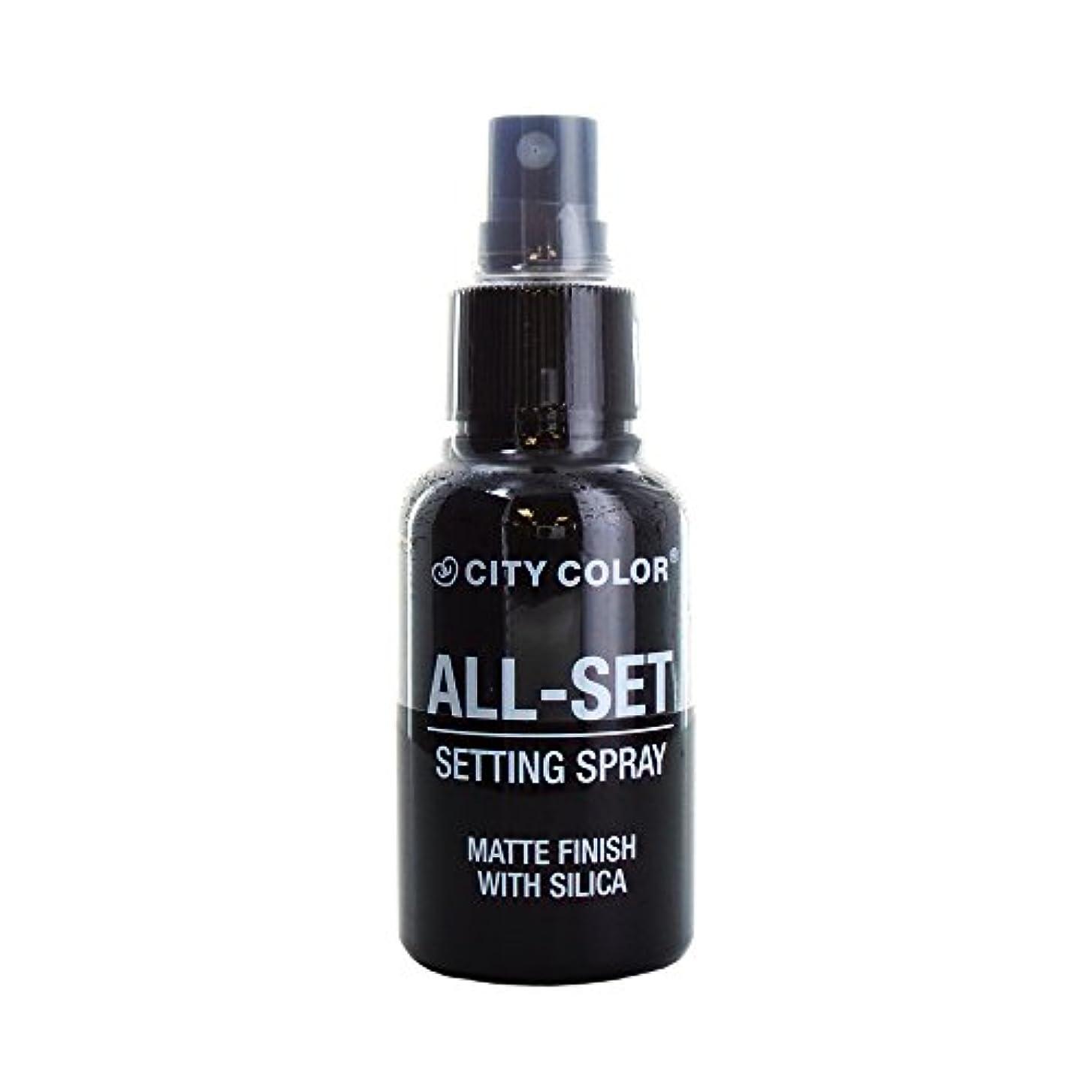 不愉快に折り目そよ風(6 Pack) CITY COLOR All-Set Setting Spray (並行輸入品)