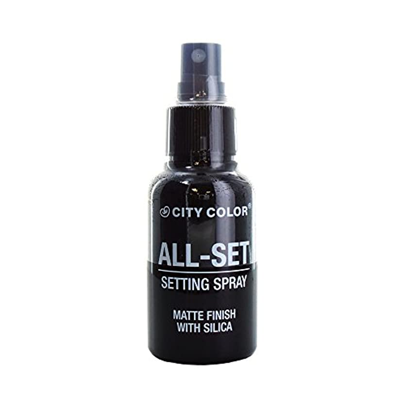 気まぐれな成熟明らかに(6 Pack) CITY COLOR All-Set Setting Spray (並行輸入品)