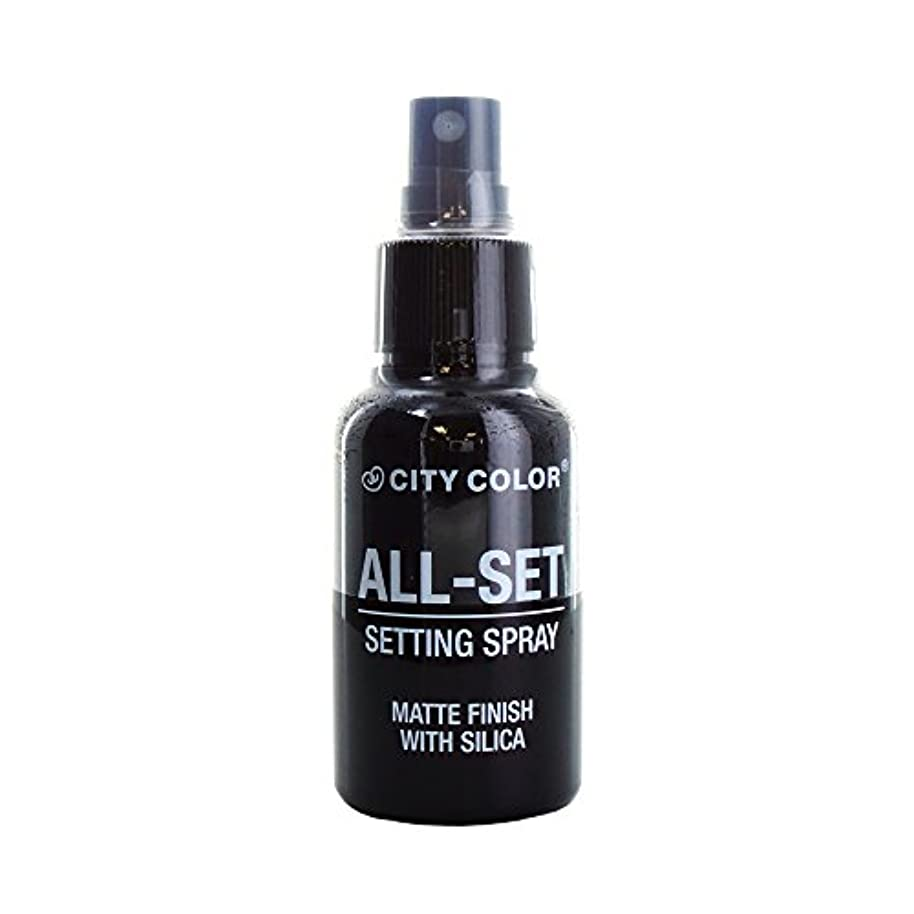 喜ぶ適合する天文学(6 Pack) CITY COLOR All-Set Setting Spray (並行輸入品)