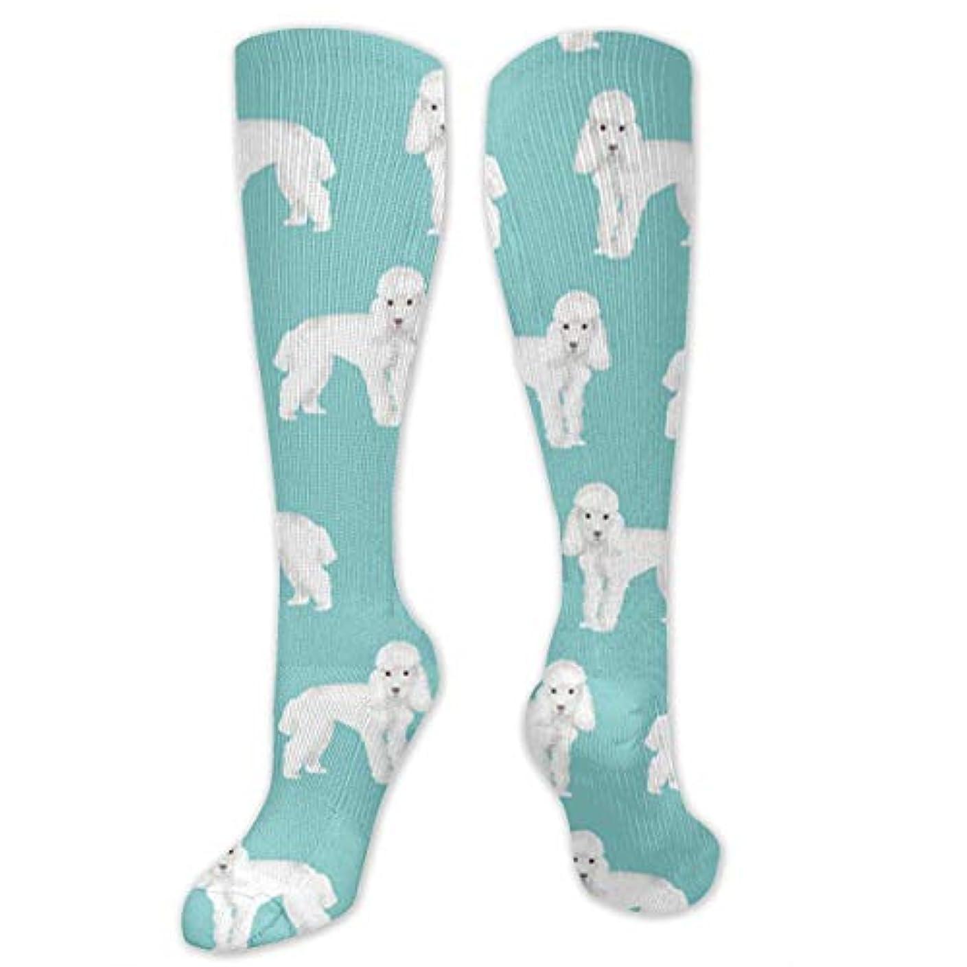 誠実息苦しい育成靴下,ストッキング,野生のジョーカー,実際,秋の本質,冬必須,サマーウェア&RBXAA Poodle Puppy Socks Women's Winter Cotton Long Tube Socks Cotton Solid...