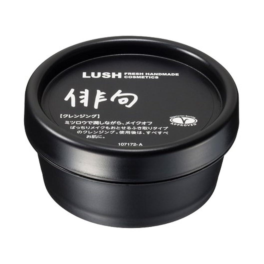 教えてく活発ラッシュ 俳句(45g)