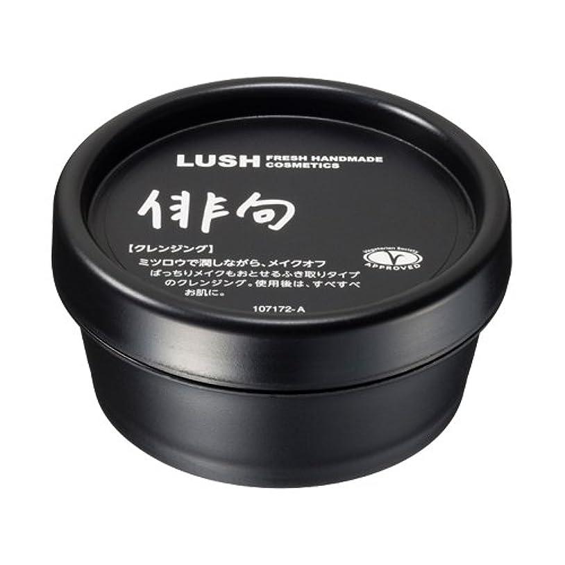 揮発性欠かせないダイジェストラッシュ 俳句(45g)