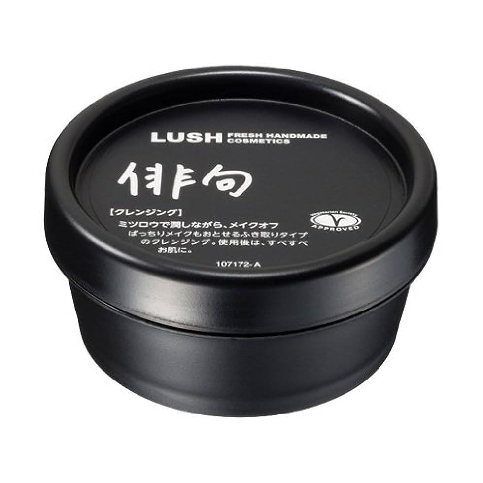 ヒロイック洋服操作可能ラッシュ 俳句(45g)