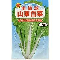 半結球 山東白菜 (春、秋まき) (223)