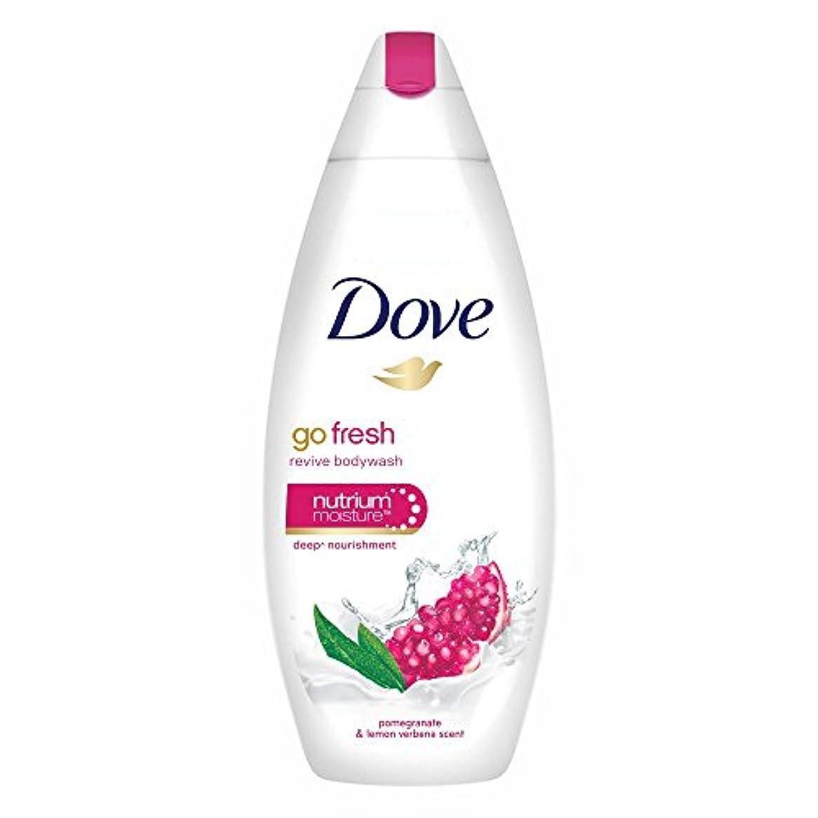 ヒール裏切る窓を洗うDove Go Fresh Revive Body Wash, 190ml
