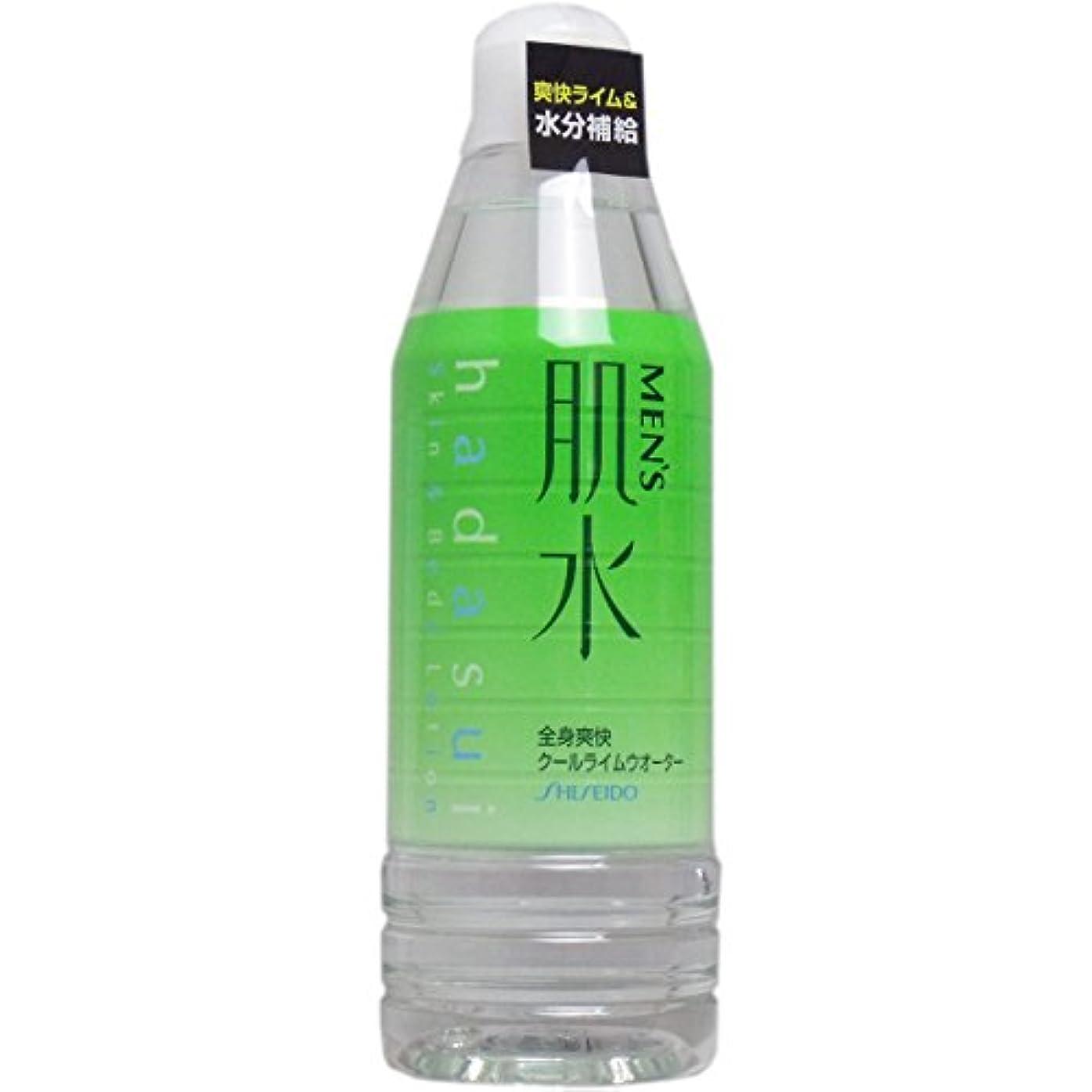 疫病福祉ひまわり資生堂メンズ 肌水ボトル 400ml